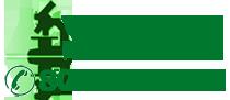 numero verde pmi servizi